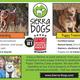 Sierra Dogs - Jun 23 2017 0924AM