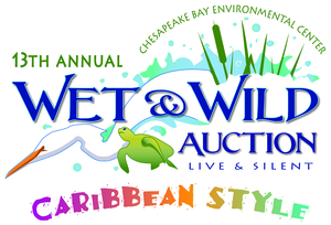 Medium wet 20  20wild 20auction