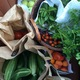 Backyard GardenShare takes surplus produce from people's gardens and transports them to local food centers for those in need. (Lark Galli/Backyard GardenShare)