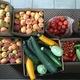 In 2016, Backyard GardenShare collected over 7,000 pounds of produce. (Pat Thomas/Backyard GardenShare)