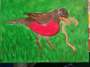 Medium robin