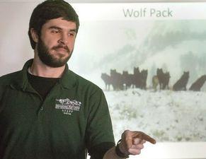 Medium wolvesatourdoorweb