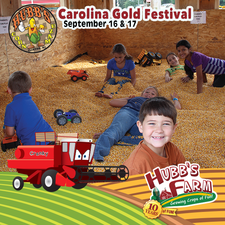 Medium hubb s carolinagoldfestival wall post  600x600