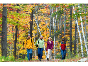 3 Fall Day Hikes Head Out into Central Vermonts Wilderness