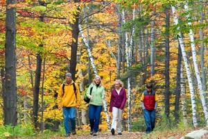 Medium family walk fall
