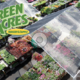 Green Acres Nursery  Supply - Sep 28 2017 0327PM