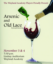 Medium arsenic 20and 20old 20lace 20graphic