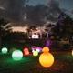 Night Lights illuminate Naples Botanical Garden. Photo courtesy of Naples Botanical Garden.