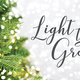 Light the Grove 2017 - start Dec 14 2017 0500PM