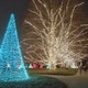 More than 500000 outdoor lights will be hung in 124 trees
