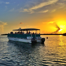 Christmas Eve Sunset Dolphin  Wildlife Cruise - start Dec 24 2017 0445PM