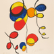 Calder resize for catalogue image