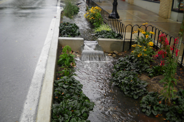 Rain garden demonstrating weir flow (flow rates) during a rain event in State College