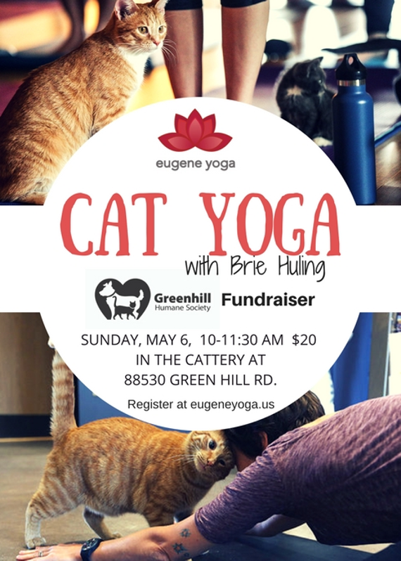 Cat 20yoga 20brie 20may 202018