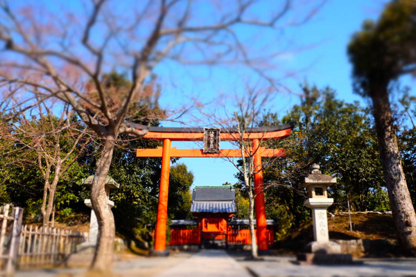 Gates at Tenryu