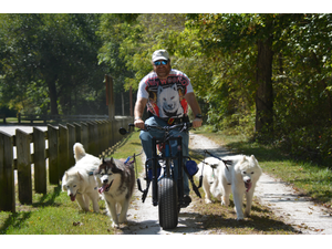 Bill Helman and the Art of Urban Mushing - Jun 11 2018 0645PM