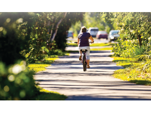 The  bicycle  paths  on  Sanibel  Island  travel  through  both  shady  nature  stretches  and  commercial  areas