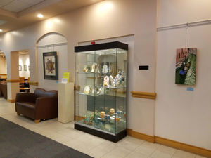The art gallery at Cape Coral Lee County Public Library is operated by the Friends of the Cape Coral Library Exhibits are changed nine times a year