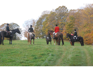 North Country Hounds 12th Annual Hunter Pace  - Sep 07 2018 0204PM
