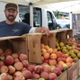 Farmers Market enjoys apple harvest theme - 10022018 1251PM