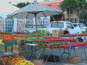 Cape Coral Farmers Market - start Oct 06 2018 0800AM