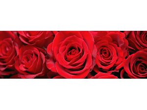 Valentines Day Dinner at the Pine - start Feb 14 2019 0500PM