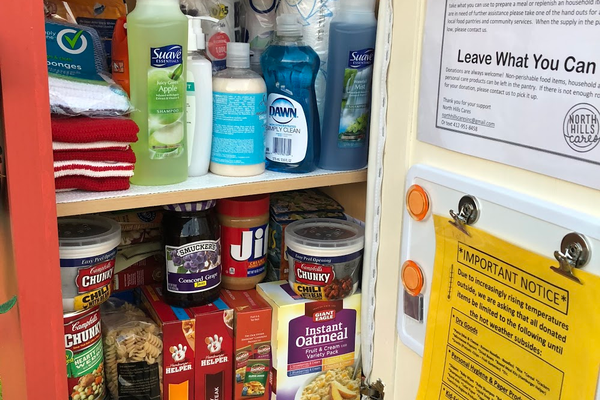 The Little Free Food Pantry in West View