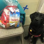 Hero Dog Ruby receives a care pack.
