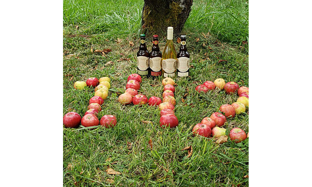 142 20years 20in 20apples 20cider 20bottles 20 jpg