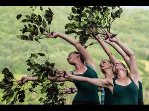Farm to Ballet   - start Jul 27 2019 0630PM