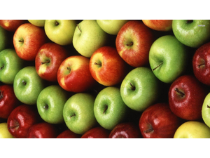 Apple Season  - start Sep 22 2019 0100PM