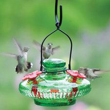 Medium feeder