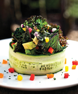 Crazy Sexy Kale Salad Recipe from Kris Carr