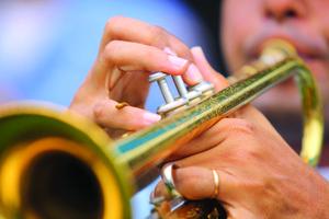Medium trumpetcloseup