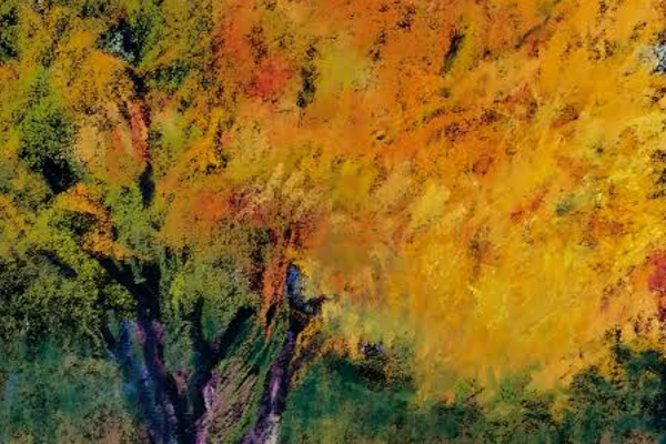 An autumn pastel by Denise Vitollo.