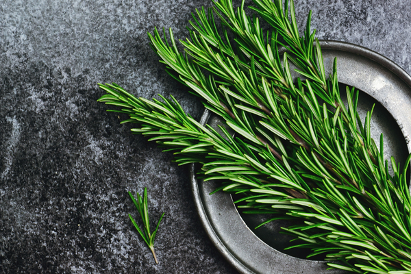 Rosemary boosts memory mood sleep