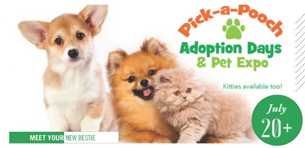 Pick-a-Pooch poster, with pets