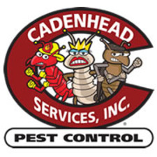 Medium cadenhead fb pro