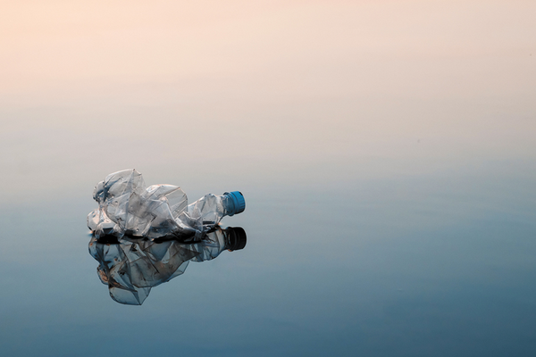 Littered crumpled plastic bottle floating in water