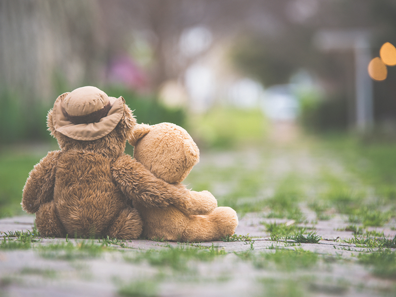The back of a teddy bear wearing hat placed on ground with comforting arm around other teddy bear