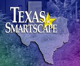 Medium smartscape orignal logo
