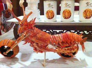Medium lobster motorcycle